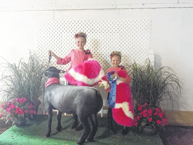 The 2015 Guys and Gals Sheep Lead competition was held Monday evening at the Sales Arena at the Fayette County Fair. The winners of the Pairs Fashion Class were Hidy and Cali Kirkpatrick.