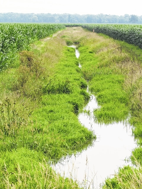 The University of Michigan released a report Tuesday saying farmers are not enough to stop fertilizer runoff into the soil that is contaminating the regions waterways and lakes.