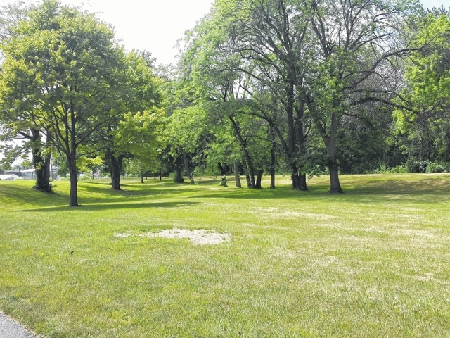 A group of local citizens plan to build a dog park at Christman Memorial Park in Washington C.H.