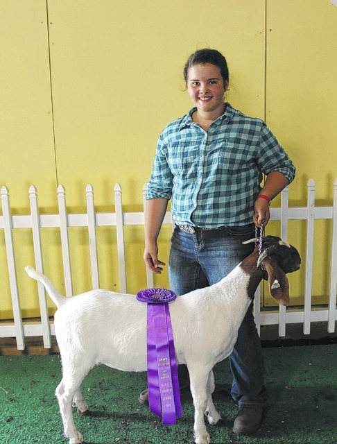 Abigail Mick won the reserve champion percentage doe prize Tuesday at the Fayette County Junior Fair Goat Show.