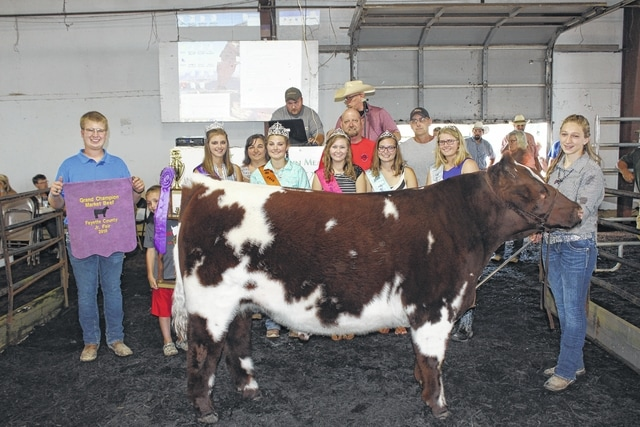 Victoria Waits' grand champion steer sold for $4,250 at Friday's Fayette County Beef Steer Sale. Waits (center) is pictured with buyers and fair royalty: (front) brother Quinton Waits, Ashton Bain of 5 Point, Fair Queen Bethany Reiterman, Beef Queen McKenzie Riley, Fair Attendant Virginia Schappacher, Fair Attendant Ginna Climer, Fair Attendant Alexis Schwartz, (back) Nicole Reiterman of Reiterman Feed & Seed, buyer Larry Dean, Mike Rife of Rife Family Show Cows.