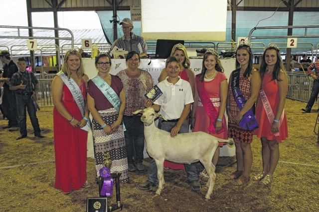 Goats sold Thursday - The Record Herald