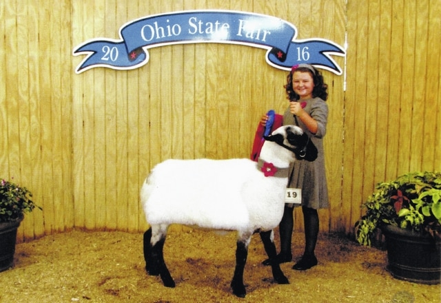 Natalie Lindsey, 11, and daughter of Shawn and Aimee Lindsey of Washington Court House, won first place in her age division at The Ohio State Fair. Contestants are judged on garment construction, style or fashion accessories, entrant's poise and appearance, control of animal, presentation and appearance of animal. Fayette County was well-represented at the State Fair Sheep Lead.