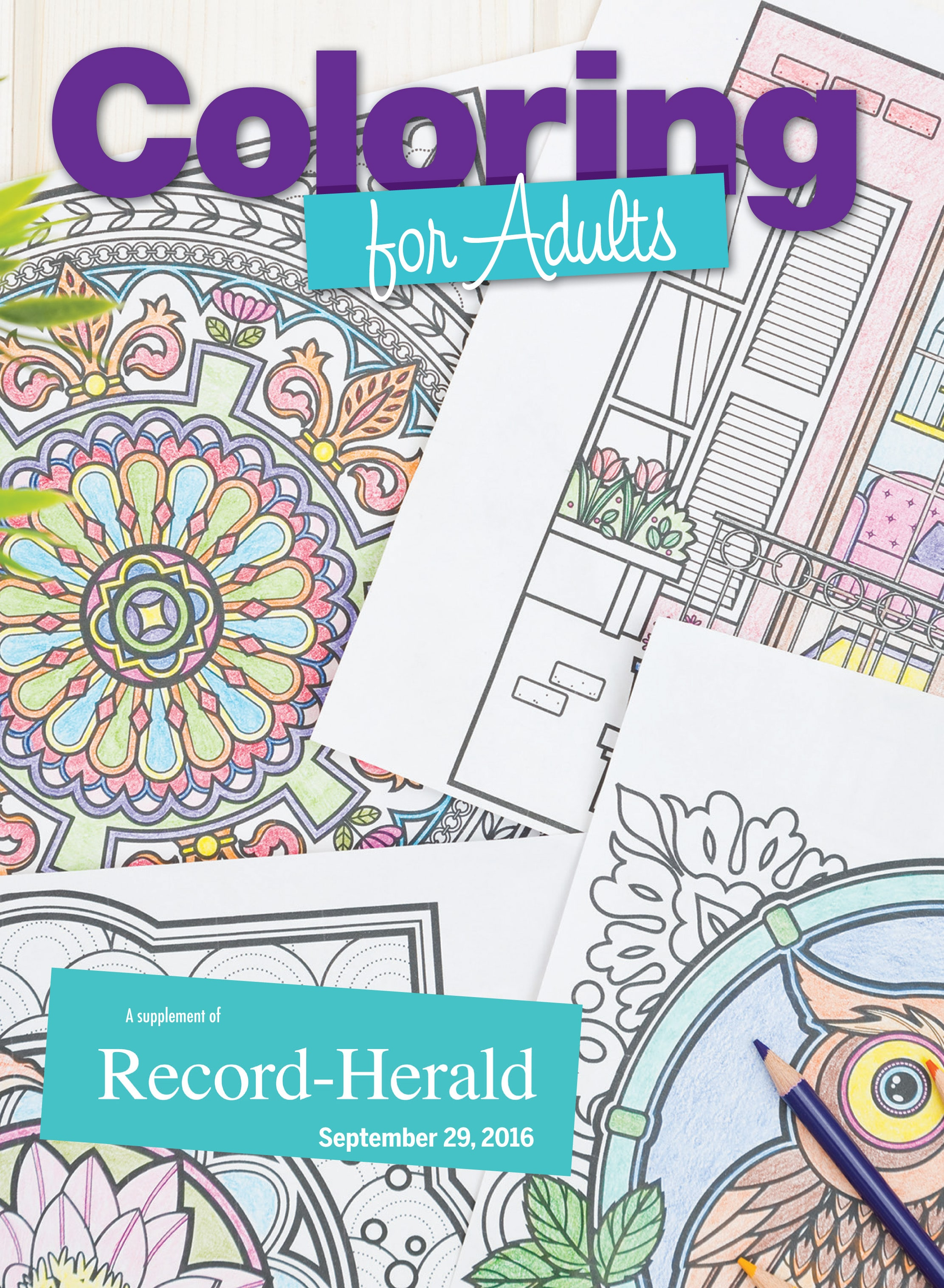 eEdition: Adult Coloring Book 2016