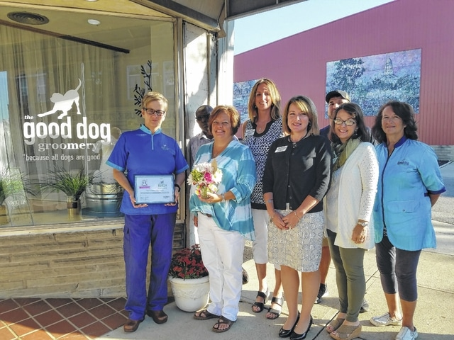 Good Dog Groomery in Washington Court House celebrated its one-year anniversary with the Fayette County Chamber of Commerce recently.