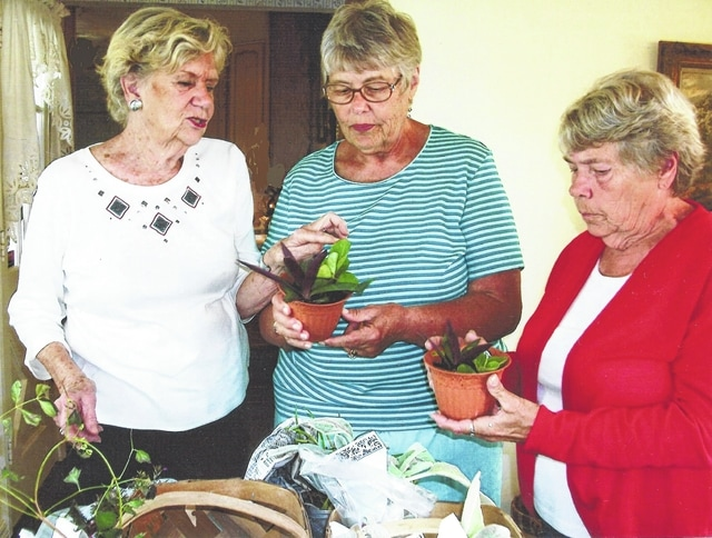 Fayette Garden Club members (left to right) Jodi Kirkpatrick, Pat Parsons and Marjorie Clifford looking over the plant and seed exchange table.