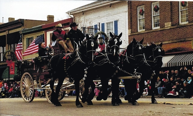 Pictured is one of nearly 100 horse drawn carriages. This is the annual Lebanon Christmas Carriage Parade that passes by the Golden Lamb.