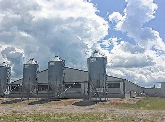 Land on Jones Road in Fayette County was transferred Feb. 16 for a proposed hog facility that is expected to be similar to this hog facility in Clinton County, also owned by John Surber.