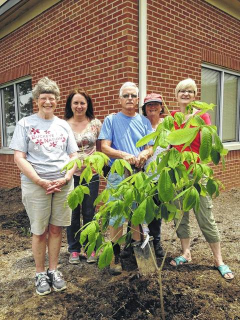 The OSU Alumni Club of Fayette County has donated two Bottlebrush Buckeye shrubs to be included in the new native plants landscaping project at the entrance to the Agricultural Service Center. Helping to plant are club members Pat Gall, Brigitte Hisey, Don Creamer and Elizabeth Straathof. Supervising was Sara Creamer of the OSU Extension.