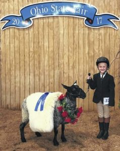 Knecht wins big at county/state fairs over summer