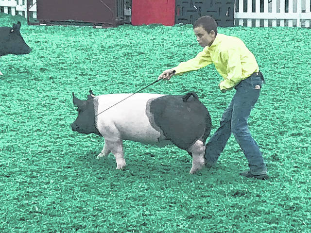 Aiden Knecht, of Fayette County, attended the hog show at the NAILE in Louisville, Ky. in November. Livestock and exhibitors from all across the U.S. were in attendance. Aiden showed showmanship and he placed sixth in the market hog class. This was his third year showing at this national show.