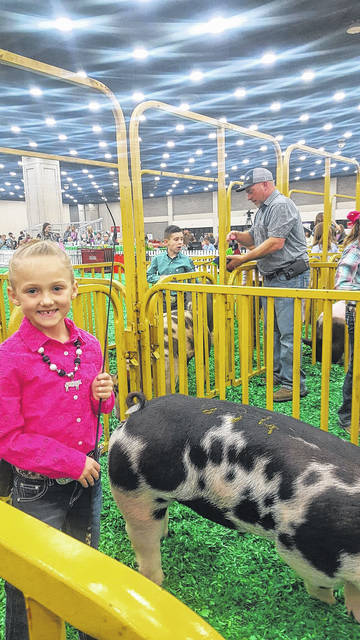 Alli Knecht, age 8 of Jeffersonville, recently showed hogs at the North American International Livestock Exposition, also known as NAILE in Louisville, Ky. Alli placed fifth in the market hog class and showed in her age division in showmanship. This was her first year showing hogs at the NAILE. Pictured is Alli and her pig, Miss Splat.