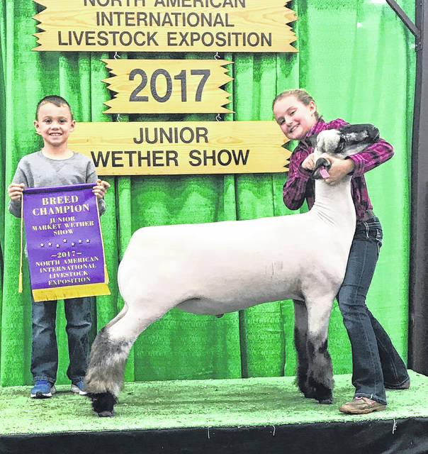 Olivia Seaburn, 11, of South Charleston, exhibited the Grand Champion Shropshire at the Junior Wether Show at the North American International Livestock Exposition held in Louisville, Ky. on Nov. 11 and 12. She also received second place for her Dorset wether. There were 1,374 lambs competing in the Junior Wether Show from 33 states judged by Evan Snyder from Atglen, Pa. Olivia is the daughter of Ryan Seaburn of South Charleston and granddaughter of Steve and Donna Seaburn of Mount Sterling.