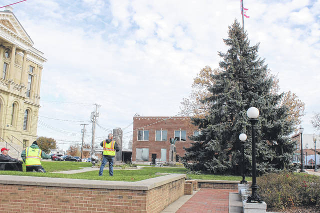 Members of the Washington Court House Street Department and City Manager Joe Denen set in place the Christmas tree on the courthouse lawn Tuesday morning.