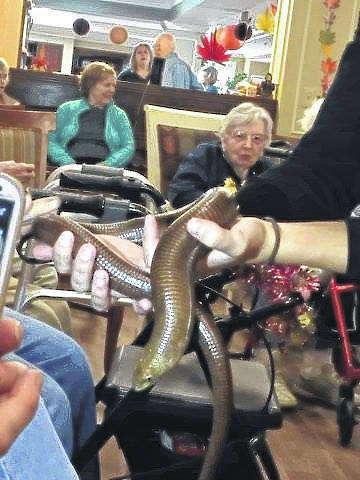 Carriage Court Assisted Living recently had the pleasure of hosting the Columbus Zoo and Aquarium. It was a fun-filled event and the residents were able to enjoy a presentation by the zoo, featuring a variety of animals and reptiles. This is just one of many activities that residents are able to enjoy at Carriage Court. For information about future events, please contact Beth McCane, director of sales and marketing at 740-333-3434.