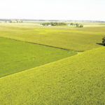Jefferson Twp. farm protected by easement