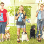 Dog rally and agility winners