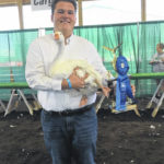 Poultry showmanship winners named
