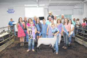 Cattle & Sheep sales held Friday